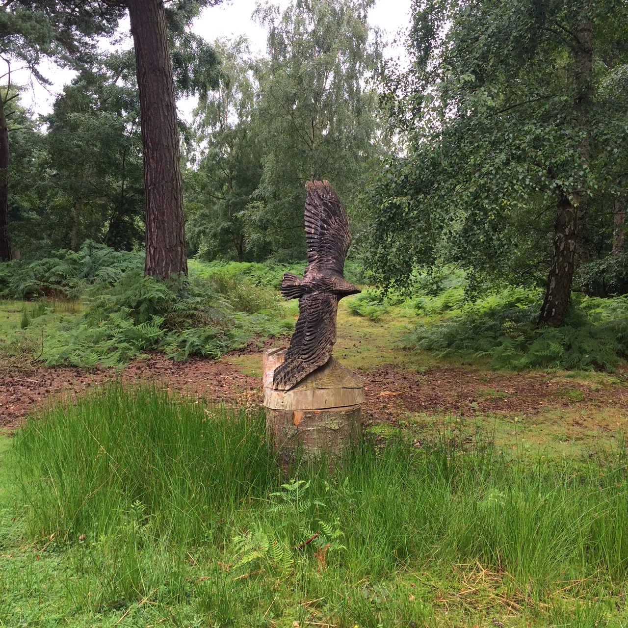 Natural burial Epping Forest 2